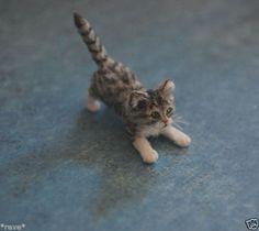 OOAK Realistic Playful Kitten Dollhouse Miniature 1 12 Handmade Sculpture   eBay. By Reve.