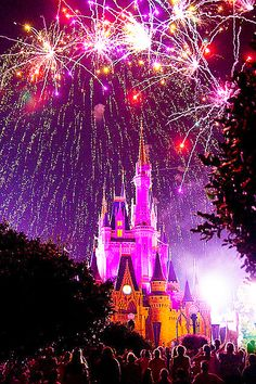 Saw this amazing-ness in person!  New Years Eve Fireworks over the Magic Kindom, Disneyworld.  The BEST fireworks shower I have (and probably will) ever seen!