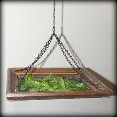 Love this idea of making your own hanging herb drying rack. I'd make it a little more eye pleasing though.