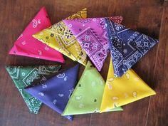 bandana praire points for denim quilts