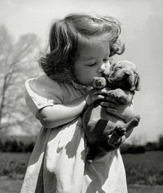 Christina Goldsmith Kissing A Weimaraner Puppy From Her Father's Stock Of Weimaraner Hunting Dogs 1950