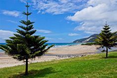 Burnie foreshore, north west coast of Tassie. Article and photo by Carol Haberle for www.think-tasmania.com