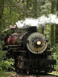 Texas State Railroad.  The Piney Woods of East Texas