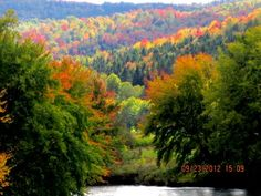 Fall foliage in the Great North Woods of New Hampshire from 9/23, courtesy Ellie Jones.