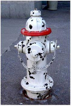dalmation fire hydrant