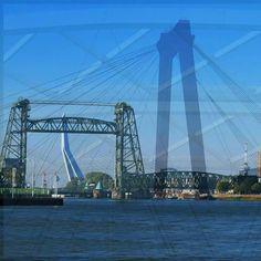 De parels van Rotterdam