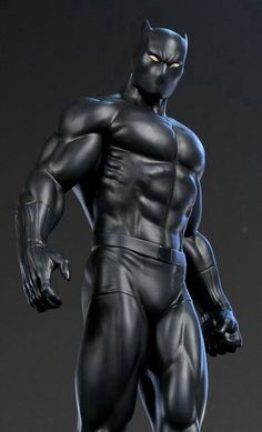 Black Panther/T'Challa. He is half sister of Black Panther/Shuri. He is wife or…