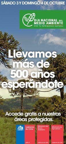 MMA » Con declaratoria en Juan Fernández y las Islas Desventuradas, Chile triplica la superficie de áreas marinas protegidas en sus islas oceánicas