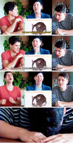 GIF SET: Anthony, Dan or a RAT?