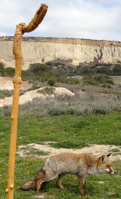 Offrez-vous un Bâton de Randonnée Original & Personnel....ici une Rencontre inattendue dans les Bardenas Réales!... Sculpture de Pierre Damiean. Voir le Site:  www.pierdam.fr
