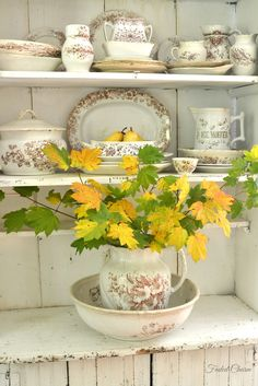 Lovely branches of Autumn leaves in old vintage jug and basin on old rustic dresser displaying vintage chinaware.