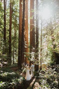 Bride and groom walk through big sur redwoods to celebrate their elopement. It was a romantic day filled with love and laughs~ check out more of these wedding portraits on Meg's Marvels Photography blog. Hotel Wedding Venues, Destination Wedding Locations, Barn Wedding Venue, Tent Wedding, Wedding Ceremonies, Big Sur Wedding, Space Wedding, Rustic Wedding Inspiration, Elopement Inspiration