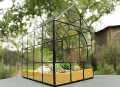 terariu-plante-greenarium-natura-verde-casuta-mozaic Terrarium, Home Decor, Geometry, Terrariums, Decoration Home, Room Decor, Home Interior Design, Home Decoration, Interior Design