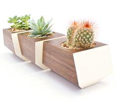BOXCAR PLANTERS