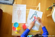 The Study of the Circulatory System for Kids Physical Education Games, Health Education, Physical Activities, What Causes Heart Disease, Circulatory System For Kids, Human Body Science, Team Building Activities, Body Organs, Respiratory System