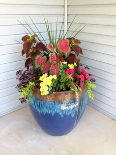 Maybe instead of a box planter by the front door, a colorful pot.