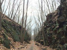 1. Larkin State Park Trail (Middlebury)