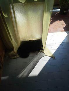 Perché il sole può uccidere, meglio nascondersi