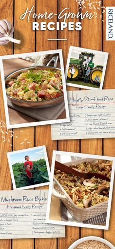 Our Riceland farmers have plenty of great rice recipes to share! Check out this Hearty Stir-Fried Rice and a Mushroom Rice Bake for delicious, comforting recipe ideas. Pin for dinner later! Stuffed Mushrooms, Stuffed Peppers, Stir Fry Recipes, Rice Recipes, Stir Fry Rice, Mushroom Rice, Long Grain Rice, How To Dry Rosemary