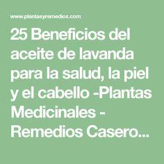 25 Beneficios del aceite de lavanda para la salud, la piel y el cabello -Plantas Medicinales - Remedios Caseros - Medicina Natural