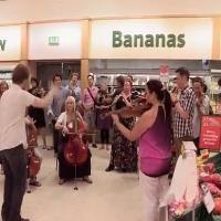 Grocery Store Coronation Anthem