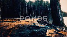 Romantic lake - Стоковое видео   by dimansky