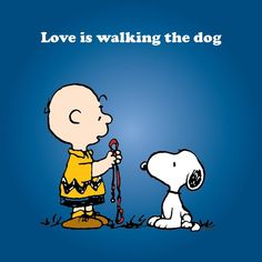 'Love is.Walking the Dog', Charlie Brown and Snoopy. I miss our walks, Turdy Turd Meu Amigo Charlie Brown, Charlie Brown Und Snoopy, Charlie Brown Quotes, Funny Meme Quotes, Dog Quotes, Qoutes, Happy Sunday, I Love Dogs, Puppy Love