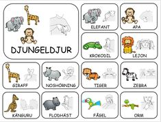 Teckenkartor Sign Language Book, Learn Swedish, Swedish Language, English Alphabet, Learn Chinese, Farm Theme, Tiger, Pre School, Teacher