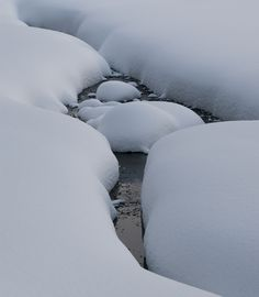 Snowy Creek - null