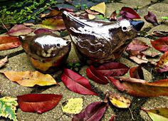 Gosia's Workshop: Autumnal garden offers lovely background for some ...