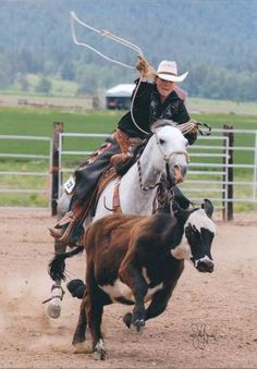 Gorgeous All-Around 8 Year Old Gray Gelding for Sale - For more information click on the image or see ad # 35545 on www.RanchWorldAds.com