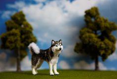 OOAK 1:12 Dollhouse Miniature Siberian Husky Furred