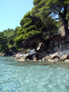 "Pine trees ""kissing"" the sea. Beautiful Islands, Beautiful Places, Places To Travel, Places To See, Skiathos, Karpathos, Corfu, Places In Greece, Ocean Pictures"