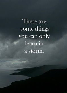 Do you become alive in a storm or hide?