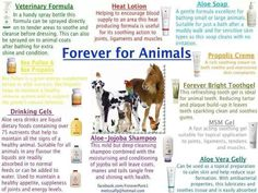 check out this link to a breif a-z of uses of aloe for horses Jojoba Shampoo, Forever Freedom, Forever Living Business, Forever Aloe, Formula Cans, Forever Living Products, Large Animals, Aloe Vera Gel