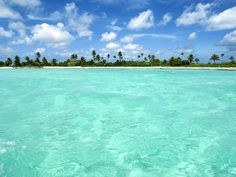 Palm Paradise Beach - Beach Travel - Palm Paradise Beach Beach Vacations | Travel Beach |   The Maldives