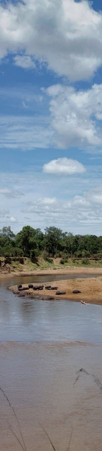 Mara River Panorama II