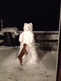 Polar bear to snow sculpture by Dawn Gould with her dog Buddy