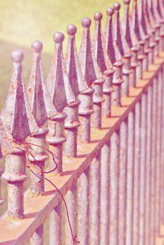 dreamy fence