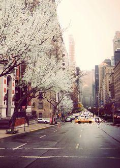 New York in the spring