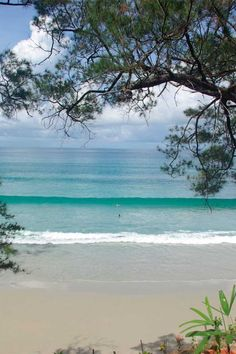 Pantai Avoi, Sabah, Borneo