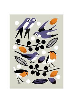 Garden Birds - Nad