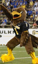 Southern Miss Golden Eagles mascot, Seymour. Sec Football, Football Stuff, Football Season, College Football, Southern Miss Golden Eagles, Sports Advertising, Go Eagles, Team Mascots, Southern Heritage