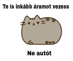 """Find and save images from the """"pusheen magyar😉"""" collection by Zoé Rácz (zoeracz) on We Heart It, your everyday app to get lost in what you love. Pusheen Cat, Big Bang Theory, Funny Moments, Bigbang, Puns, Funny Jokes, We Heart It, Haha, Have Fun"""