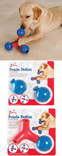 Zanies® Puzzle Station™ Dog Toy at The Animal Rescue Site