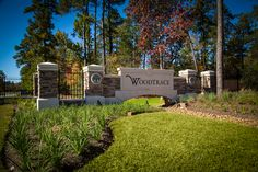 Woodtrace Entry