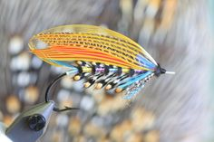 Belle Star (Youngers) Fishing Lures, Fly Fishing, Flying Tattoo, Salmon Flies, Fly Tying, Patagonia, Feather, Butterfly, Star
