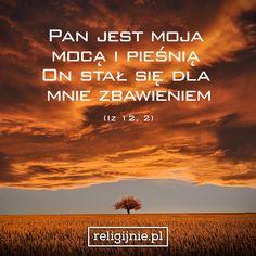 cytaty z pisma świętego Najlepsze obrazy na tablicy Cytaty z Pisma Świętego (173)   Bible  cytaty z pisma świętego