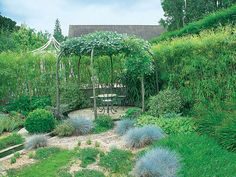 """Willow """"fedge,"""" or fence-hedge, and pleached shelter of sorbus are living structures at RHS Garden Wisley in England.   - Veranda.com"""