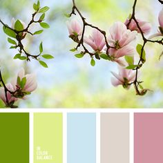 Color inspiration from the picture of cherry blossoms against a light blue sky. Pastel shades of light green and pink will look organically in a girls nursery. This palette will give a feeling of joy and positiveness to the child witho. Spring Color Palette, Pastel Palette, Colour Pallette, Spring Colors, Colour Schemes, Color Combos, Color Harmony, Color Balance, Balance Design